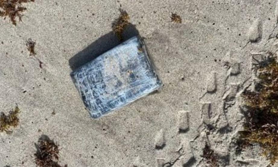 البحر يقذف ثروة ضخمة على أحد الشواطئ هذه الدولة